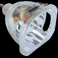 BENQ PalmPro 7765PE Lámpa modul nélkül