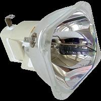 DELL M210X Lámpa modul nélkül