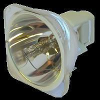 TOSHIBA TDP-TX10 Lámpa modul nélkül